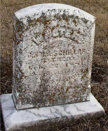 SCHILLER, WALTER - Ida County, Iowa | WALTER SCHILLER