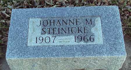 STEINICKE, JOHANNE M. - Ida County, Iowa | JOHANNE M. STEINICKE