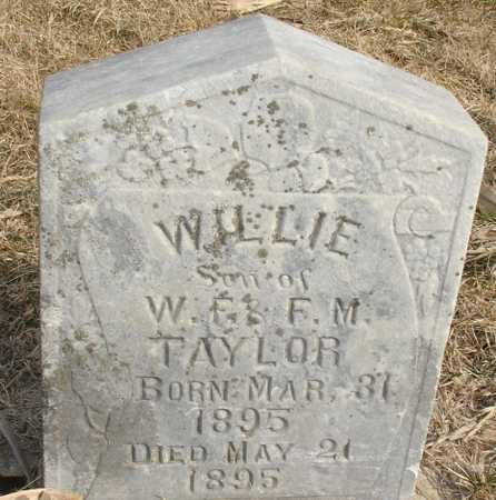 TAYLOR, WILLIE - Ida County, Iowa   WILLIE TAYLOR
