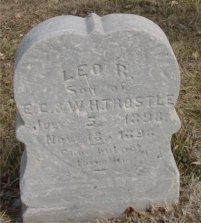 TROSTLE, LEO R. - Ida County, Iowa   LEO R. TROSTLE
