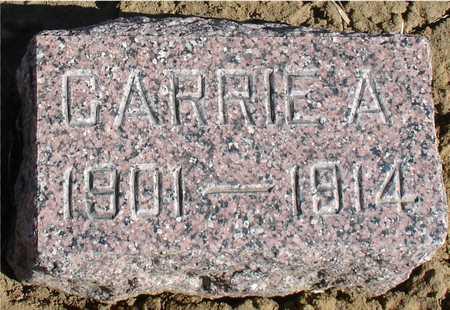 WARN, CARRIE A. - Ida County, Iowa | CARRIE A. WARN