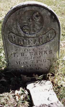 BANKS, HANNAH J. - Iowa County, Iowa | HANNAH J. BANKS
