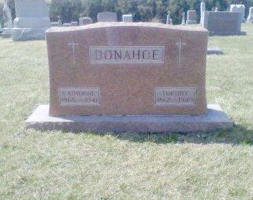 DONOHOE, CATHERINE - Iowa County, Iowa | CATHERINE DONOHOE