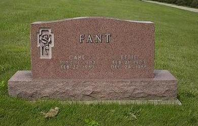 FANT, EFFIE - Iowa County, Iowa | EFFIE FANT