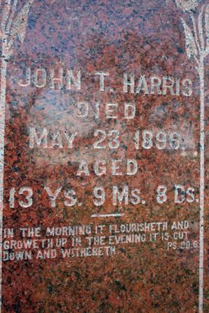 HARRIS, JOHN T. - Iowa County, Iowa | JOHN T. HARRIS