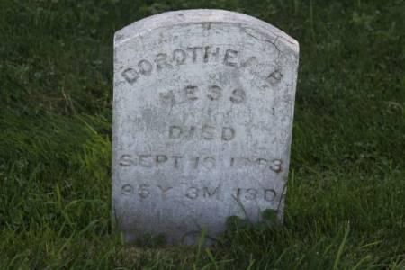 HESS, DOROTHEA B. - Iowa County, Iowa   DOROTHEA B. HESS