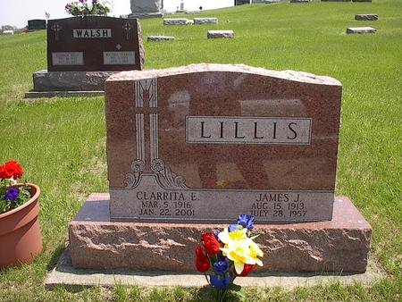 LILLIS, JAMES J. - Iowa County, Iowa | JAMES J. LILLIS