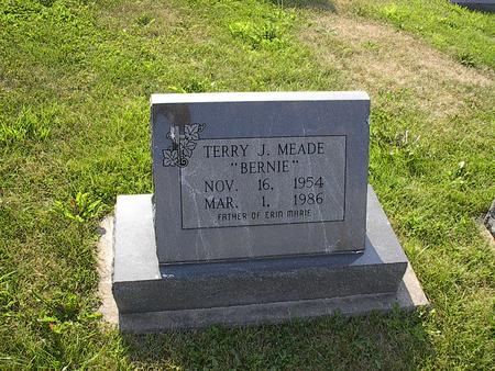 MEADE, TERRY