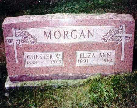 MORGAN, ELIZA ANN - Iowa County, Iowa | ELIZA ANN MORGAN