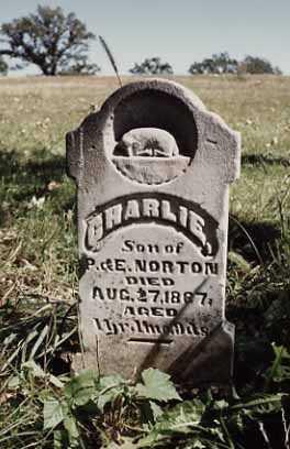 NORTON, CHARLIE - Iowa County, Iowa   CHARLIE NORTON