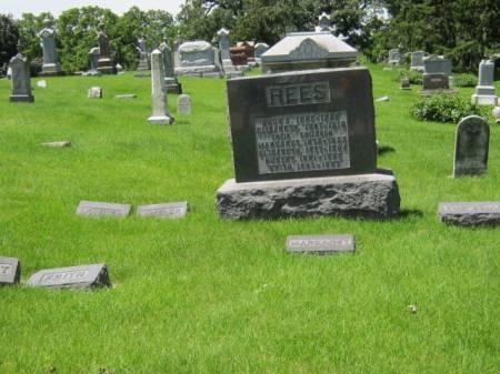 REES, FAMILY STONE - Iowa County, Iowa   FAMILY STONE REES