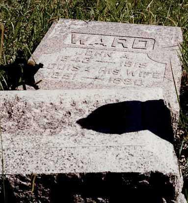 WARD, LOUISA - Iowa County, Iowa | LOUISA WARD