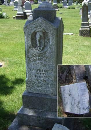 WILLIAMS, ANNIE E. - Iowa County, Iowa | ANNIE E. WILLIAMS
