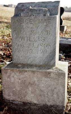 WILLIS, ALICE MAE - Iowa County, Iowa | ALICE MAE WILLIS