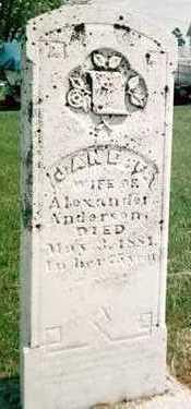 ANDERSON, JANE F. - Jackson County, Iowa   JANE F. ANDERSON