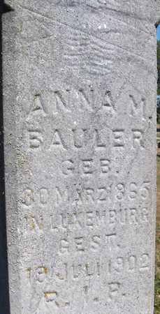 BAULER, ANNA M. - Jackson County, Iowa | ANNA M. BAULER