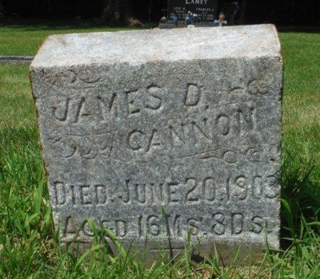 CANNON, JAMES D. - Jackson County, Iowa   JAMES D. CANNON