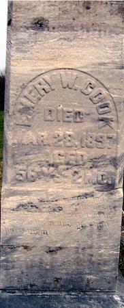 COOK, EMERY W. - Jackson County, Iowa | EMERY W. COOK