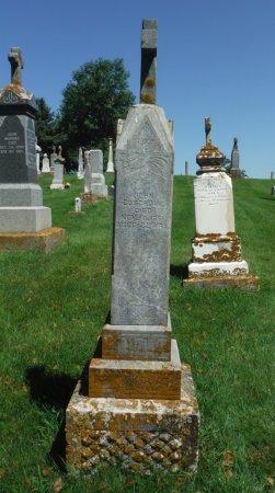 COSGROVE, JOHN - Jackson County, Iowa | JOHN COSGROVE