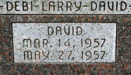 DECKER, DAVID - Jackson County, Iowa | DAVID DECKER