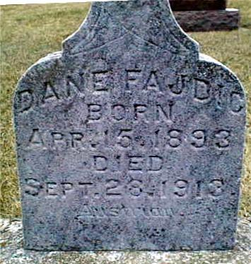 FAJDIC, DANE - Jackson County, Iowa | DANE FAJDIC
