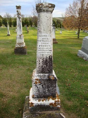 FAMILY MONUMENT FEENEY, THOMAS J. - Jackson County, Iowa | THOMAS J. FAMILY MONUMENT FEENEY