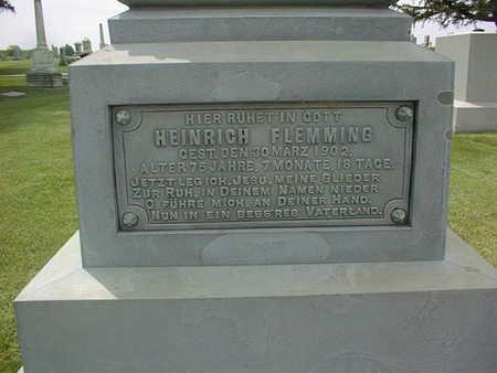 FLEMMING, HEINRICH - Jackson County, Iowa | HEINRICH FLEMMING