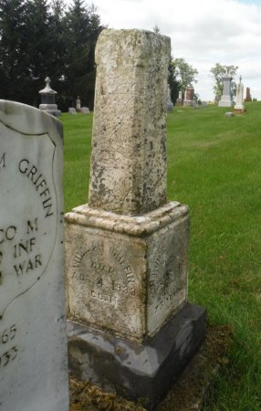 GRIFFIN, WILLIAM M. - Jackson County, Iowa | WILLIAM M. GRIFFIN