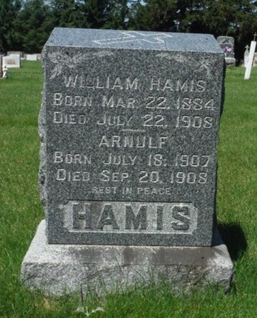 HAMIS, WILLIAM - Jackson County, Iowa | WILLIAM HAMIS