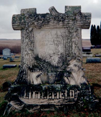 CARNS LITTLEFIELD, D.JANE - Jackson County, Iowa | D.JANE CARNS LITTLEFIELD
