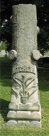 MITCHELL, H.H. - Jackson County, Iowa   H.H. MITCHELL