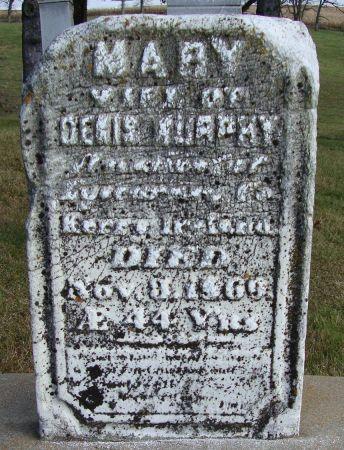 MURPHY, MARY - Jackson County, Iowa | MARY MURPHY