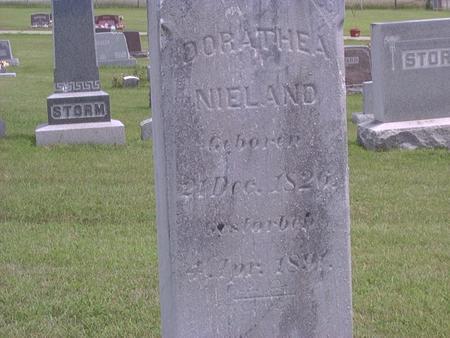 NIELAND, DOROTHEA - Jackson County, Iowa | DOROTHEA NIELAND