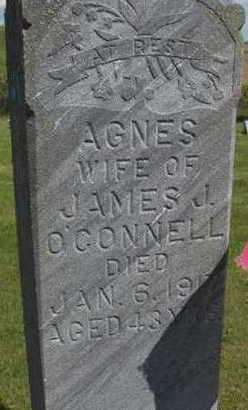 O'CONNELL, AGNES - Jackson County, Iowa   AGNES O'CONNELL