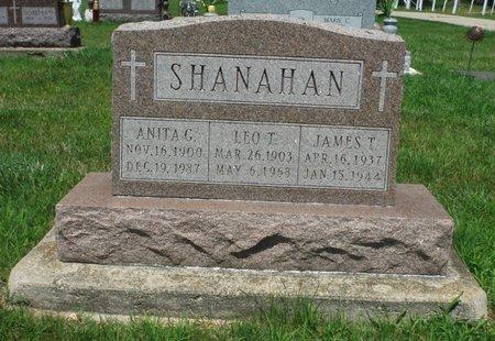 DONOVAN SHANAHAN, ANITA G. - Jackson County, Iowa | ANITA G. DONOVAN SHANAHAN