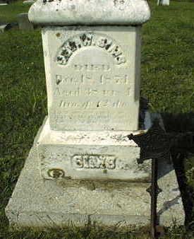 SIMS, GEORGE W. - Jackson County, Iowa | GEORGE W. SIMS