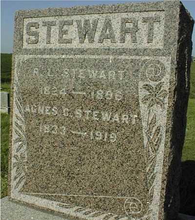 STEWART, AGNES - Jackson County, Iowa | AGNES STEWART