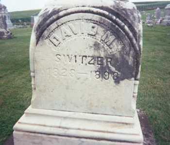 SWITZER, DAVID M. - Jackson County, Iowa   DAVID M. SWITZER