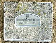 ALLFREE, HENRY I. - Jasper County, Iowa   HENRY I. ALLFREE