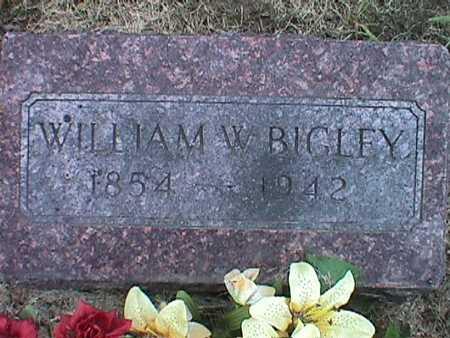 BIGLEY, WILLIAM WATSON - Jasper County, Iowa | WILLIAM WATSON BIGLEY