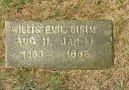 BISIM, WILLIS EMIL - Jasper County, Iowa | WILLIS EMIL BISIM
