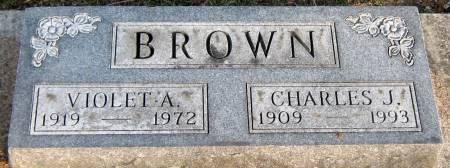BROWN, VIOLET AGNES - Jasper County, Iowa   VIOLET AGNES BROWN