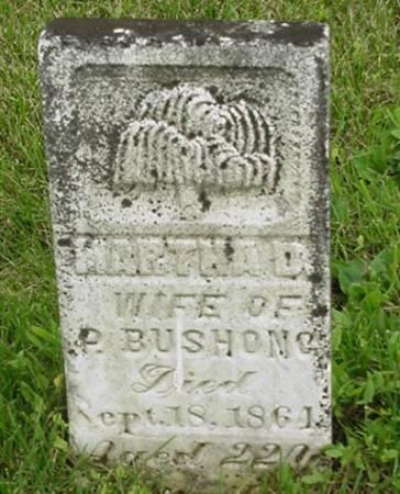 BUSHONG, MARTHA D. - Jasper County, Iowa | MARTHA D. BUSHONG