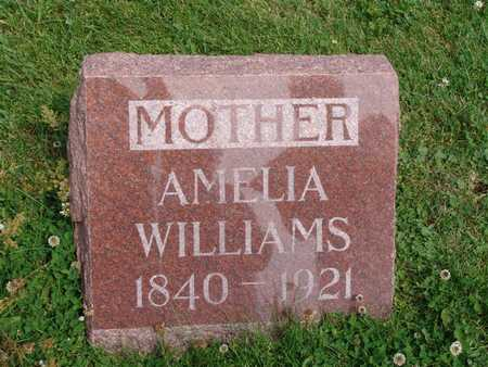WILLIAMS DUNTLEY, AMELIA - Jasper County, Iowa | AMELIA WILLIAMS DUNTLEY