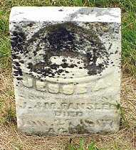 FANSLER, JESSE ALBERT - Jasper County, Iowa | JESSE ALBERT FANSLER
