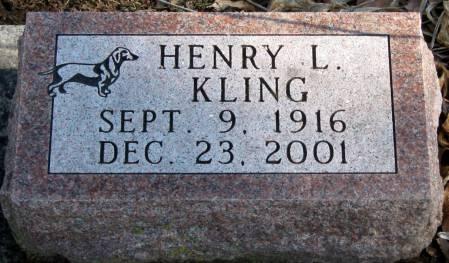 KLING, HENRY L. - Jasper County, Iowa | HENRY L. KLING