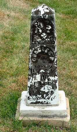 LOVE, CHARLES H. - Jasper County, Iowa | CHARLES H. LOVE