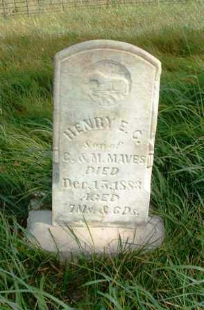 MAVES, HENRY E.G. - Jasper County, Iowa | HENRY E.G. MAVES