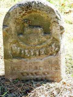 PORTER, WILLIS - Jasper County, Iowa | WILLIS PORTER