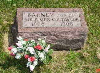 TAYLOR, BARNEY - Jasper County, Iowa | BARNEY TAYLOR